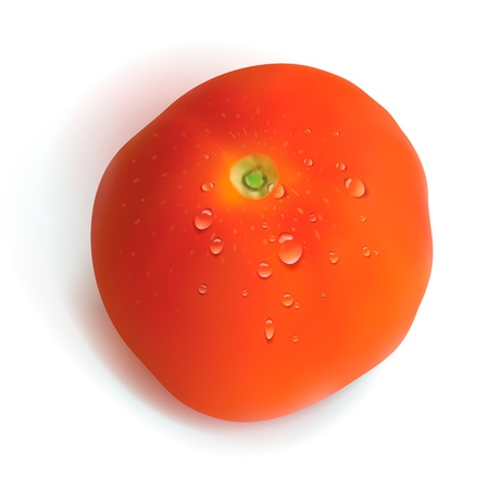 salat: Red tomato isolated on white background