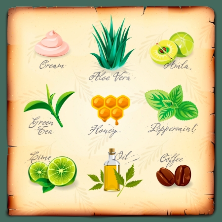 ayurveda: Set of natural cosmetics ingredients, vector Eps10 image. Illustration