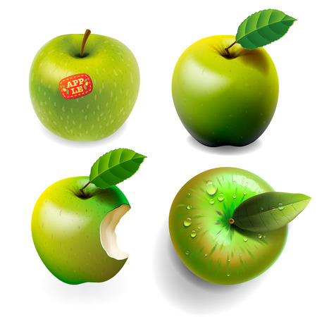 Set of green ripe Apples, various view Stock Vector - 23473172