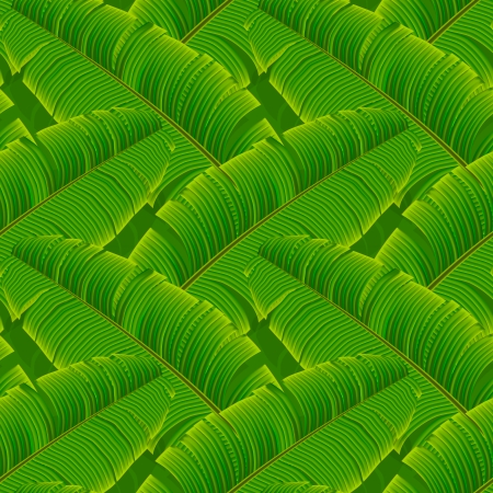 Tropical banana leaves seamless pattern, vector Eps10. Vector