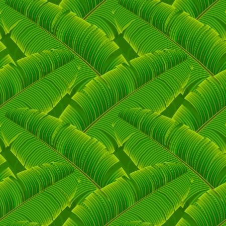 palmetto: Tropical banana leaves seamless pattern, vector Eps10.