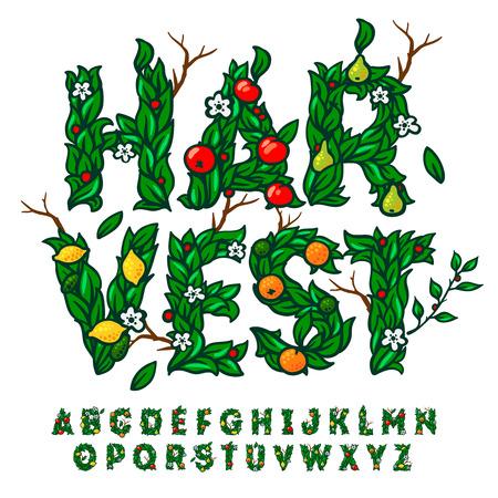 Alfabeto hecho con hojas y frutos, el uso para el diseño de fiesta de la cosecha de otoño, ilustración vectorial.