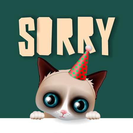 Cute grumpy cat apologize sorry card, vector illustration.