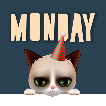after party: Monday morning with cute grumpy cat, vector illustration. Illustration