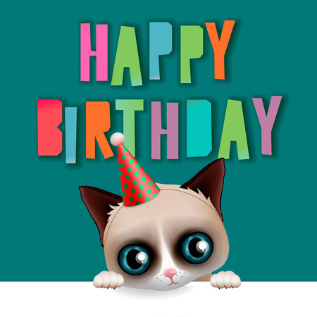 grumpy: Cute happy birthday card with fun grumpy cat, hipster design, vector illustration. Illustration