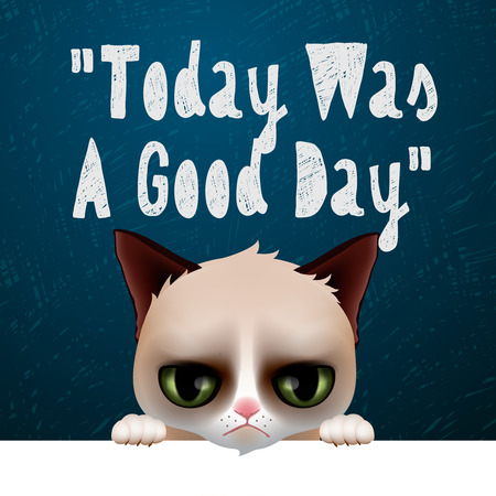 party cartoon: Today was a good day, card with cute grumpy cat, vector illustration. Illustration