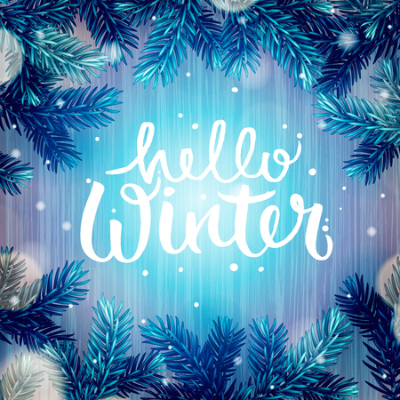 defocussed: Winter holiday background, Christmas fir tree and snowflakes, vector illustration.