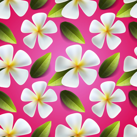 songkran: Frangipani flowers seamless pattern. Useful thai flower ornament for clothing usually for Thailands new year celebration called Songkran Festival, vector illustration.