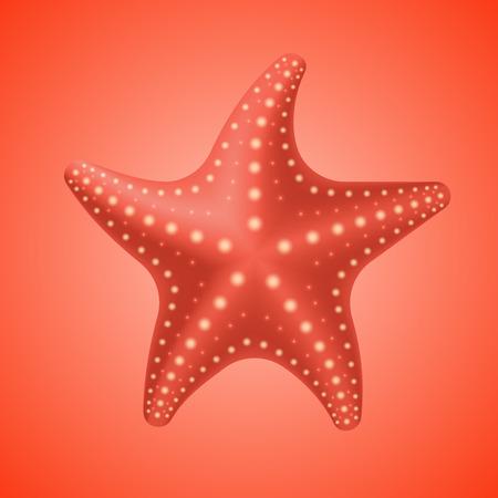 Realistische roten Seestern, Symbol auf weißem rotem Hintergrund