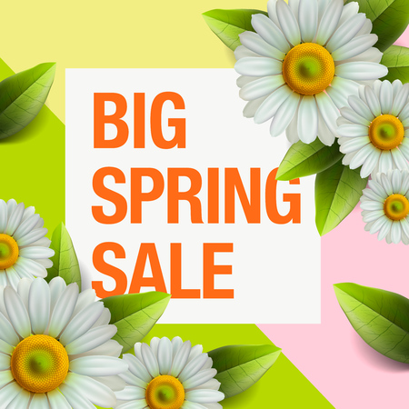 Spring sale design with colorful flowers, daisy and leaves background for spring seasonal promotion, vector illustration. Illustration