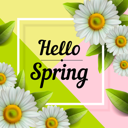Hello Spring hand Lettering with daisy flower, vector illustration.