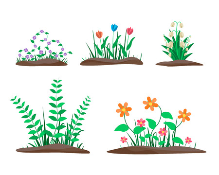 Flower Borders Set. Spring flowers growing in the garden. Flat vector illustration isolate on a white background. Ilustração