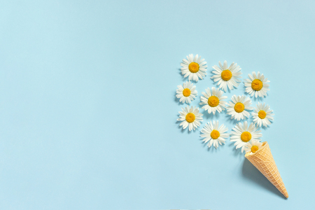 Bouquet chamomile daisies flowers in waffle ice cream cone on pastel blue color paper background Copy space Template for postcard, lettering, text or your design Flat lay Top view Concept Hello summer. Banco de Imagens
