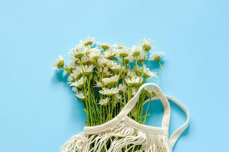 Bouquet of field daisies in reusable shopping eco mesh bag on blue background. Concept no plastic and zero waste. Copy space Top view.