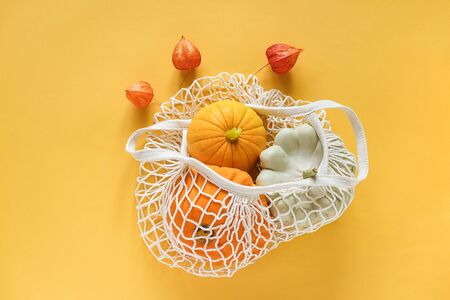 Fresh harvest vegetables gourds pumpkin, pattypan squash in shopping eco-friendly mesh bag, autumn physalis on yellow background. Concept Organic vegetable harvest. Top view Flat lay Template .