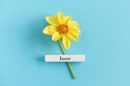 Wooden calendar summer month of June and yellow flower on blue background. Copy space. Minimal style. Template for greeting card, text, design. Hello June concept.