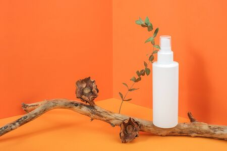 One white blank cosmetic bottle with cosmetic product on wooden stick with dried flowers and eucalyptus branch in corner space on orange background. Mockup Front view Copy space. Standard-Bild