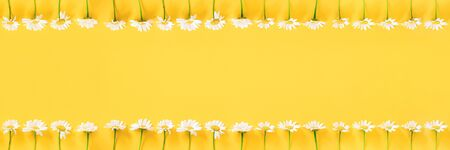Banner made with white chamomile flowers on yellow background. Concept Hello summer Template for design, greeting card, invitation, postcard Flat Lay Top view Copy space. Standard-Bild