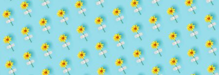 Banner made from flower pattern. Fresh natural yellow flower glued with adhesive plaster on a blue background. Concept medicine, health and naturopathy. Top view Creative Flat lay. Banco de Imagens - 150432363