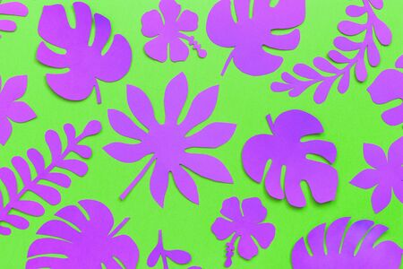 Tropical leaves pattern. Purple tropical leaves of paper on green background. Flat lay, top-down composition, creative paper art.