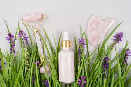 Crystal rose quartz facial roller, massage tool Gua sha and anti-aging collagen, serum in glass bottle among the green grass, purple flowers. Facial massage for natural lifting, Beauty concept. Zdjęcie Seryjne