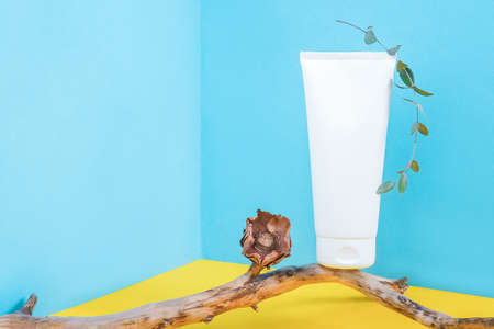 One white blank cosmetic tube bottle on wooden stick with dried flowers and eucalyptus branch in corner space on blue yellow background. Mockup Front view Copy space. Banco de Imagens - 151477944