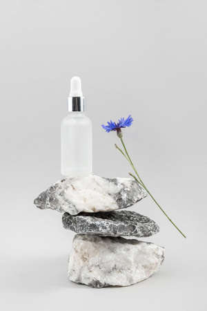 Anti-aging collagen, facial serum in transparent glass bottle with pipette on pile of stones and blue cornflower flower against gray background. Natural Organic Spa Cosmetic Beauty Concept. 免版税图像