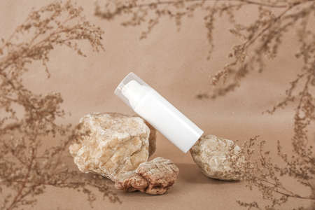 White blank cosmetic bottle with cream, moisturizing lotion, other cosmetic product or framed by dried plant flowers background on beige background. Natural Organic Spa Cosmetic concept. Top view. 免版税图像