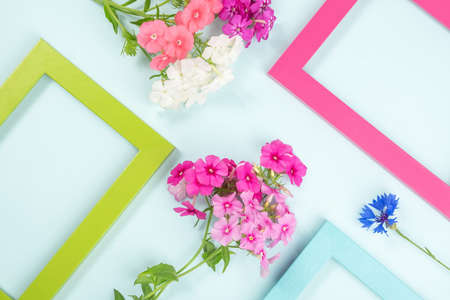Creative layout made of flowers and bright colored frames. Flat lay Top view Copy space. 免版税图像