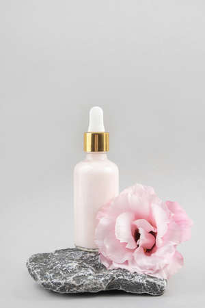 Anti-aging collagen, facial serum or moisturizing cream in glass bottle with pipette on stone and pink flower against gray background. Natural Organic Spa Cosmetic Beauty Concept Front view. Zdjęcie Seryjne