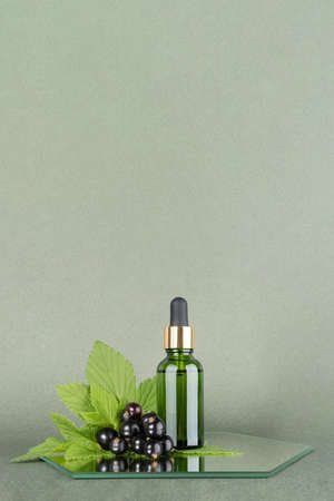 One green glass bottles with serum, essential oil or other cosmetic product with sprig of black currant on mirror, green background. Natural Organic Beauty Cosmetic concept. Front view.