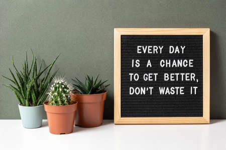 Every day is a chance to get better, dont waste it. Motivational quote on letter board, cactus, succulent flower on white table. Concept inspirational quote of the day. Front view. 免版税图像
