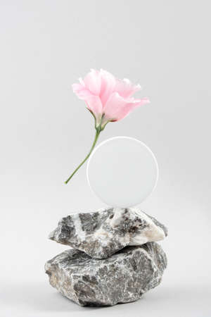 White blank cosmetic jar on stones and pink flower on gray background. Cosmetic Beauty Concept. Front view Mock up.
