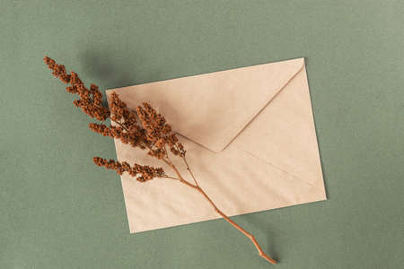 Craft envelope and dry flowers plant on green background. Top view Flat lay. Stock fotó