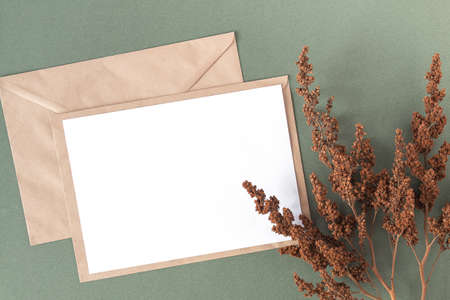 White blank card, craft envelope and dry flowers plant on green background. Top view Flat lay Mockup Copy space. Stock fotó