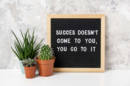 Success doesn't come to you, you go to it. Motivational quote on letter board, cactus, succulent flower on white table. Concept inspirational quote of the day. Front view.