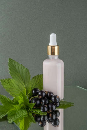 Anti-aging collagen, serum, moisturizing cream or other cosmetic product in glass bottle with pipette and sprig of black currant on mirror, green background. Natural Organic Beauty Cosmetic concept. Stock fotó