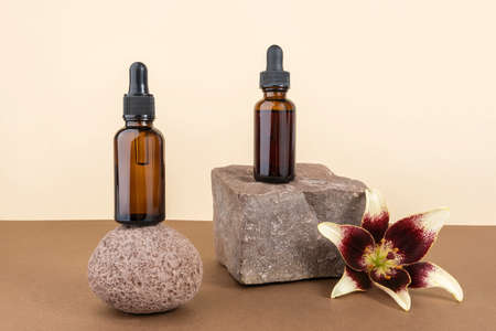 Two cosmetic brown glass bottles with pipette on stones, beige brown background. Natural Organic Spa Cosmetic concept. Front view Copy space