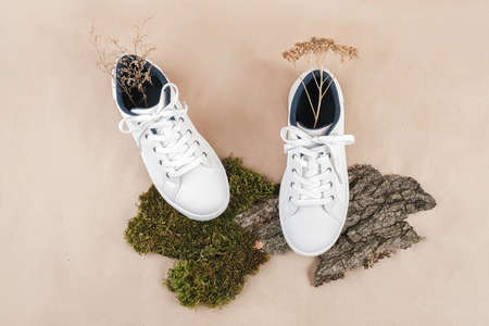 Ethical vegan shoes concept. A pair of white sneakers with dry flowers on tree bark and moss, neutral beige craft paper background. Top view Flat lay. Banco de Imagens