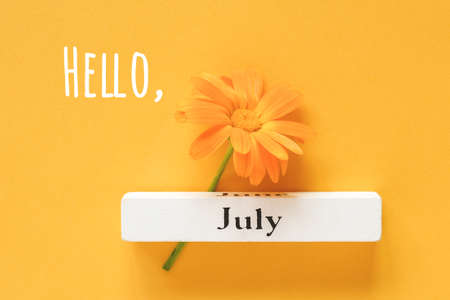 Hello July text, greeting card. One orange calendula flower and calendar summer month July on yellow background. Top view Copy space Flat lay Minimal style.