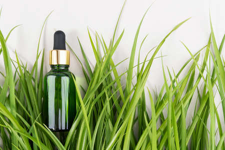 One green glass bottles with serum, essential oil, collagen or other cosmetic product among the green grass on white background. Natural Organic Spa Cosmetic concept Mockup Top view.