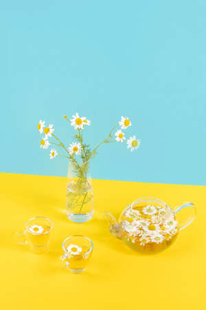 Two cups of camomile tea, transparent teapot and vase with daisy-like flowers on blue yellow background. Chamomile Tea Benefits Your Health concept.