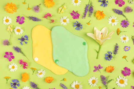 Bamboo charcoal washable sanitary napkins, healthy women's sanitary pads, reusable menstrual pads and colorful natural flowers. Health care and zero-waste, no plastic, eco-friendly concept. Stock fotó