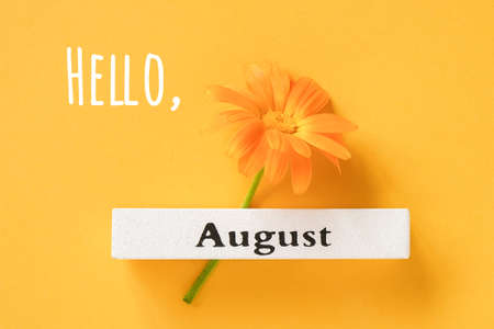 Hello August text, greeting card. One orange calendula flower and calendar summer month August on yellow background. Top view Flat lay.