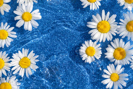 Bright summer background. Natural chamomile flowers and wave water on shining blue background. Top view Flat lay. Stock fotó