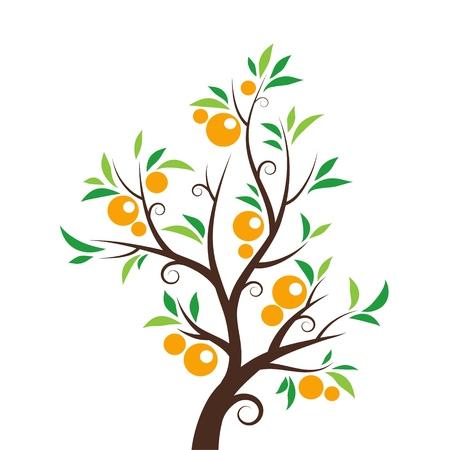 Orange tree isolated on White background. Vector illustration Çizim