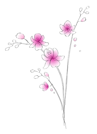 watercolor and contour orchids - digital vector artwork - background for wedding invitations or another design Çizim