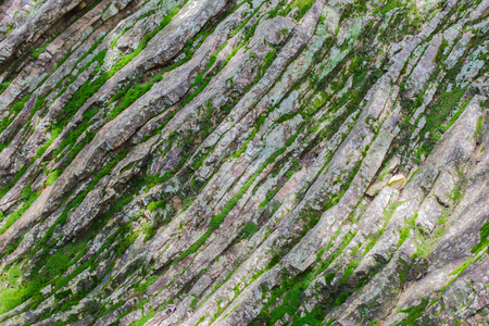 sedimentary: Unique surface of sedimentary rock wall covered with wet moss Stock Photo