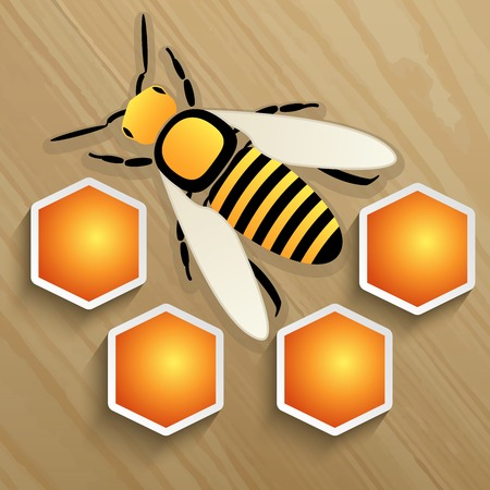 wax glossy: Bee and honeycomb on a tree. Vector illustration Illustration
