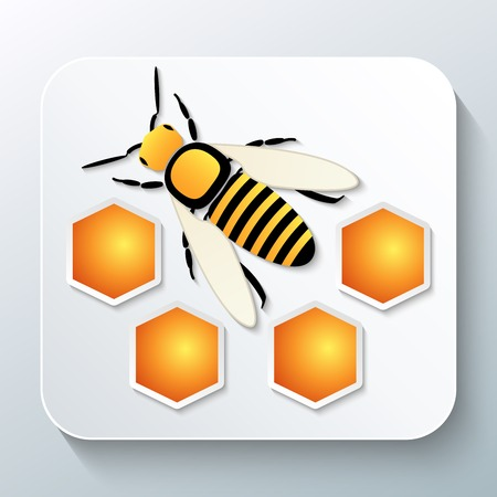 wax glossy: Bee and honeycomb with shadow. Vector illustration